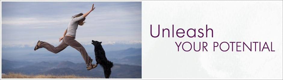 Unleash Your Pet Business Potential Banner