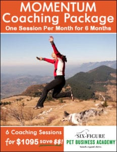momentum coaching package