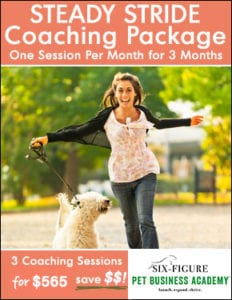steady stride coaching package